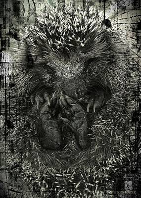 Hedgehog Poster by Liona Toussaint