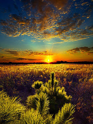Here With Me Poster by Phil Koch
