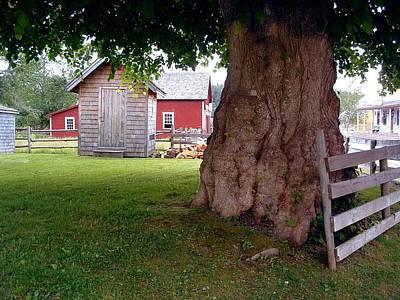History Sherbrooke Village Nova Scotia Poster