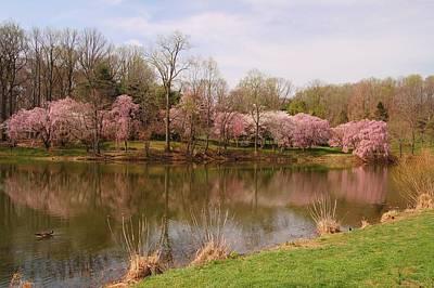 Holmdel Park In Spring Poster