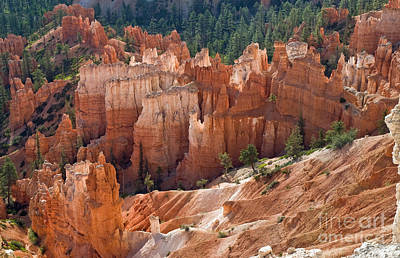 Hoodoos In The Morning Poster by Jim Chamberlain