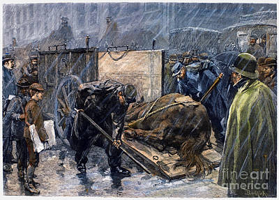 Horse Ambulance, 1888 Poster