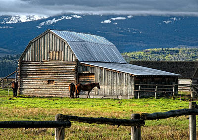 Horse And Barn On Mormon Row, Grand Teton National Park, Wyoming, Usa, May 2008 Poster