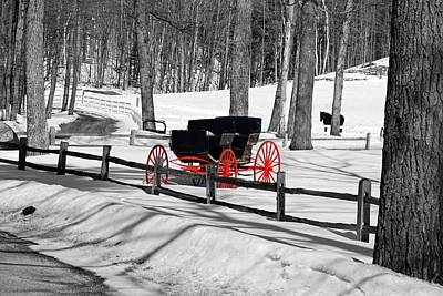 Poster featuring the photograph Horse And Buggy - No Work Today No. 2 by Janice Adomeit