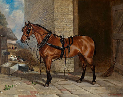 Horse In Harness Poster by Robert Nightingale