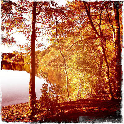 Hoxy Pond Fall 2012 Poster by Frank Winters