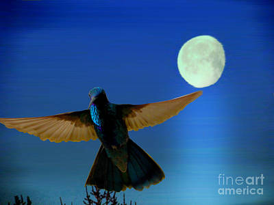 Hummingbird Moon II Poster by Al Bourassa