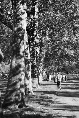 Poster featuring the photograph Hyde Park Trees by Maj Seda