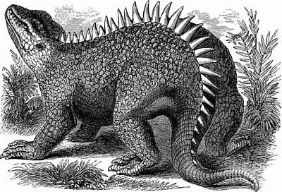 Hylaeosaurus, Cretaceous Dinosaur Poster by Science Source