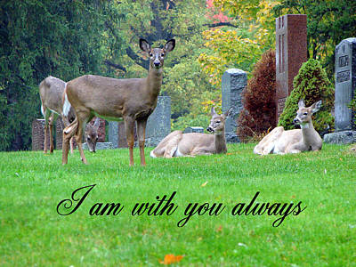 I Am With You Always Poster by Bruce Ritchie