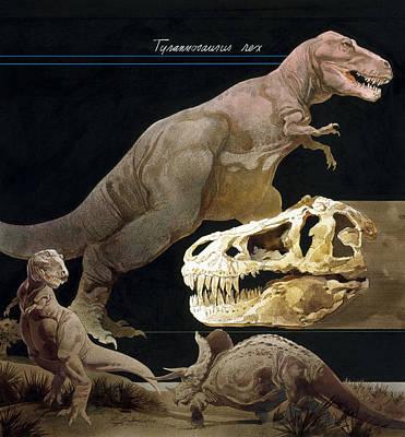 Illustration Of Tyrannosaurus Rex Poster by Roy Andersen