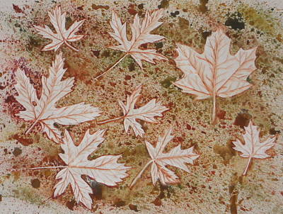 Impressions Of Maple Leaves Poster by DJ Bates