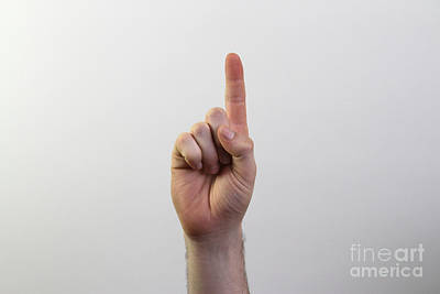 Index Finger Poster by Photo Researchers, Inc.