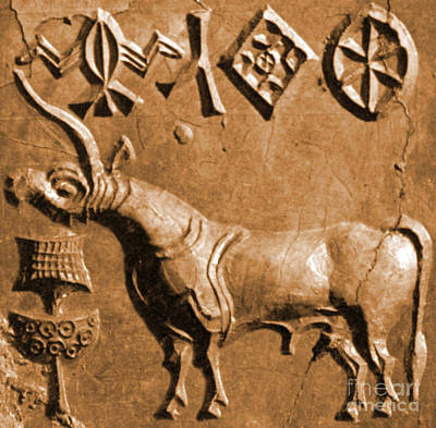 Indus Valley Unicorn Relief Poster by Science Source