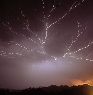 Intra-cloud Lightning At Night, Over Phoenix, Usa Poster by Keith Kent