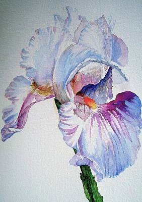 Iris In The Garden Poster by Sharon Mick