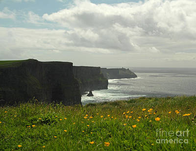 Irish Coast Cliffs Of Moher In Spring Ireland Poster