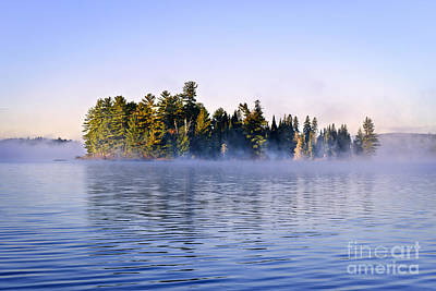 Island In Lake With Morning Fog Poster by Elena Elisseeva