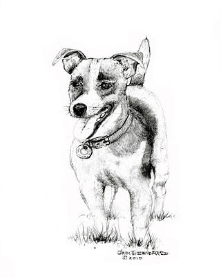 Poster featuring the drawing Jack Russell Terrier by Jim Hubbard
