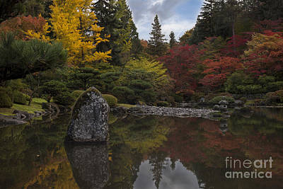 Japanese Garden Serenity Poster by Mike Reid