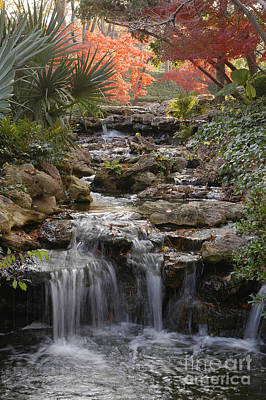 Waterfall In The Japanese Gardens, Ft. Worth, Texas Poster
