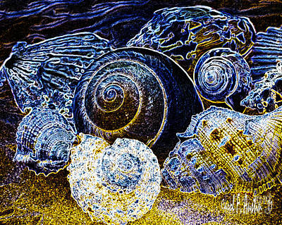 Abstract Seashell Art Poster