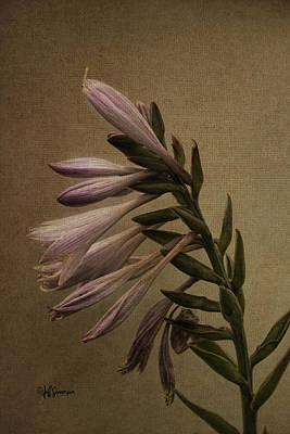 Joan's Garden Poster by Jeff Swanson