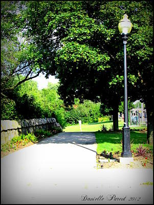 Poster featuring the photograph Jollycut Park Walk by Danielle  Parent