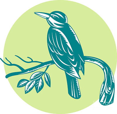Kingfisher Perching On Branch Woodcut Poster