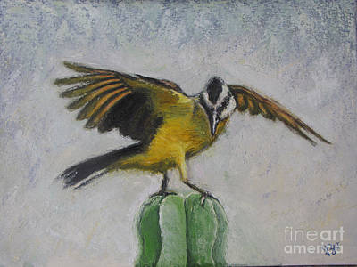Kiskadee On Cactus Poster