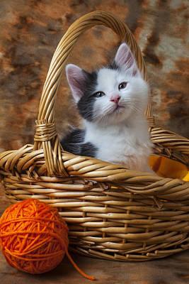 Kitten In Basket With Orange Yarn Poster