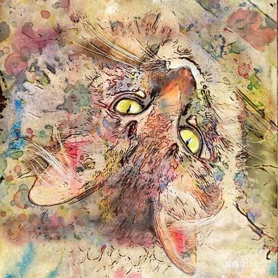 Kitty Fluffs Poster