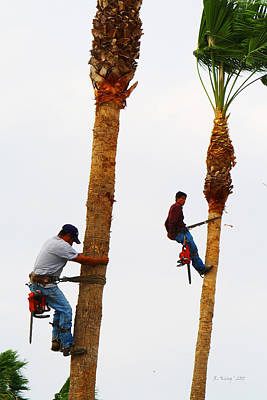 La Feria Texas Palm Tree Trimmers Poster by Roena King