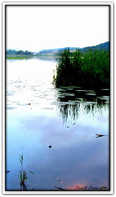Poster featuring the photograph Lac William Quebec by Danielle  Parent