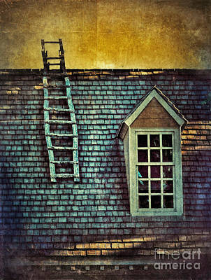 Ladder On Roof Poster by Jill Battaglia