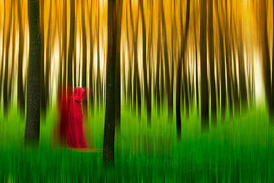 Lady In Red - 3 Poster by Okan YILMAZ