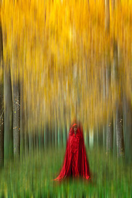 Lady In Red - 9 Poster by Okan YILMAZ
