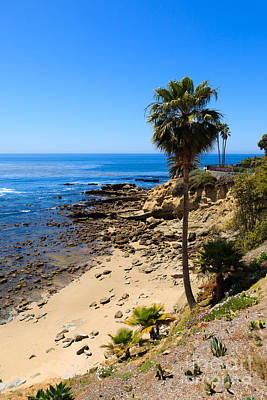 Laguna Beach California Poster by Paul Velgos