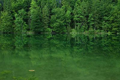 Lake Schwanensee Poster by Ingmar Wesemann