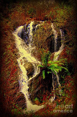 Lake Shasta Waterfall 3 Poster by Garnett  Jaeger