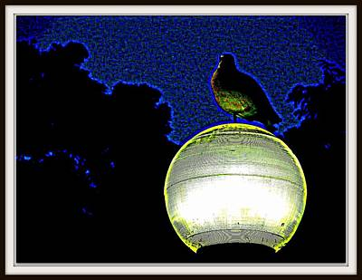 Lamp And The Bird Poster by Anand Swaroop Manchiraju