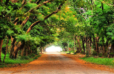 Landscape Painting Showing Road  Poster by Parinya Kraivuttinun
