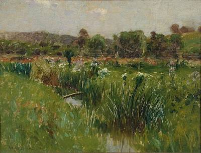 Landscape With Wild Irises Poster