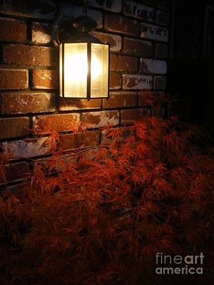 Lantern Light Maple Poster