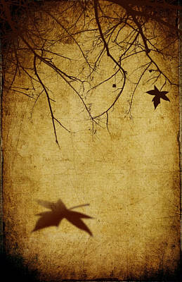Last Breath Of Autumn Poster by Svetlana Sewell