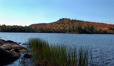 Late Fall On Lake Lila Poster