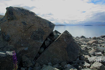 Poster featuring the photograph Laughing Rock On Lake Tekapo Foreshore.o by Nareeta Martin