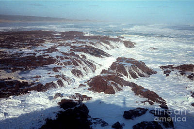 Poster featuring the photograph Lava Rock 90 Mile Beach by Mark Dodd