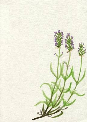 Lavender Poster by Annemeet Hasidi- van der Leij