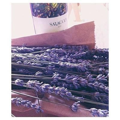 Lavender Still-life Poster by Ann K